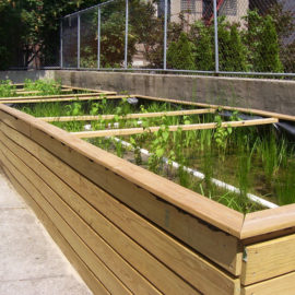 NYC STORMWATER PLANTERS